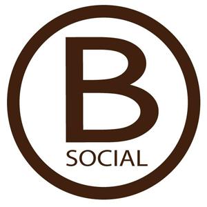 Bowmans Logo Sm