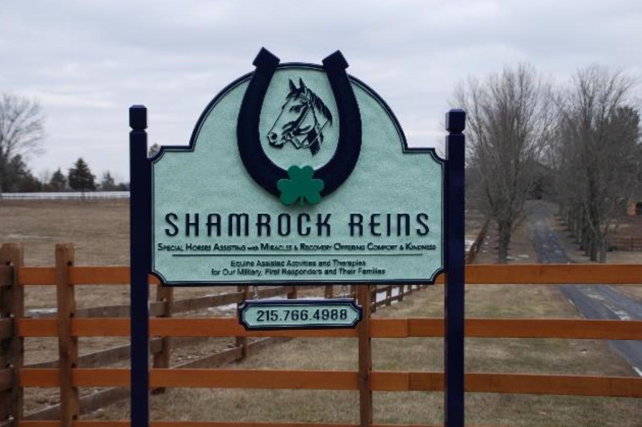 Shamrock Reins